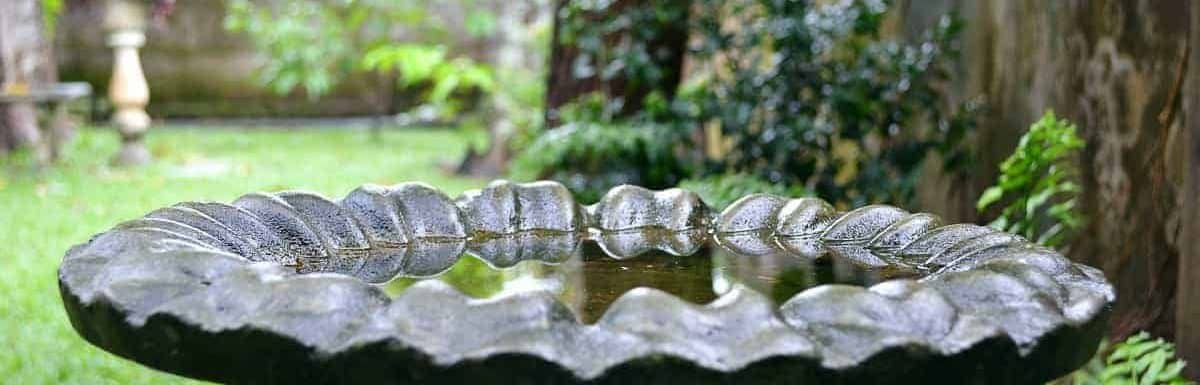 how to keep mosquitoes out of birdbaths